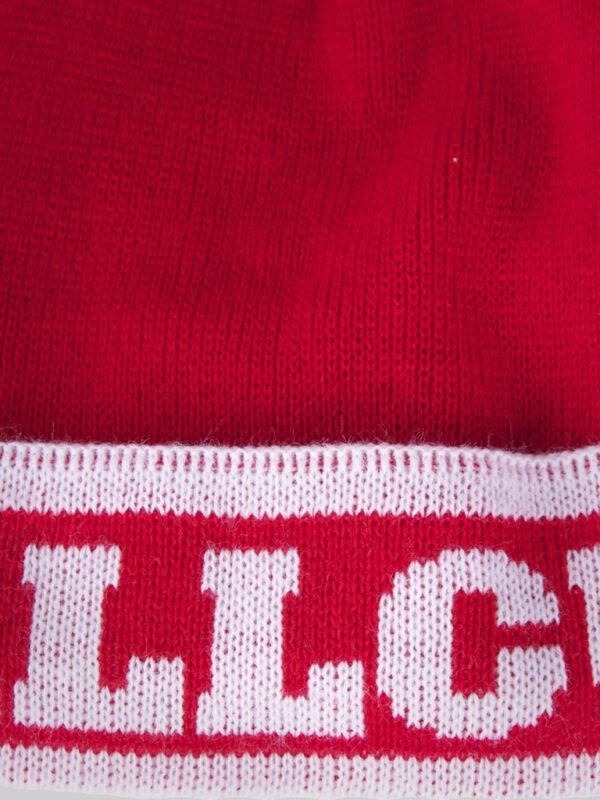 FC 131212 Beanie 2 print