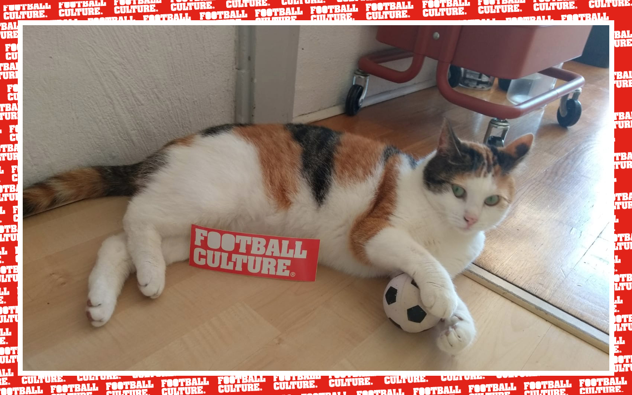 Vice FootballCulture16